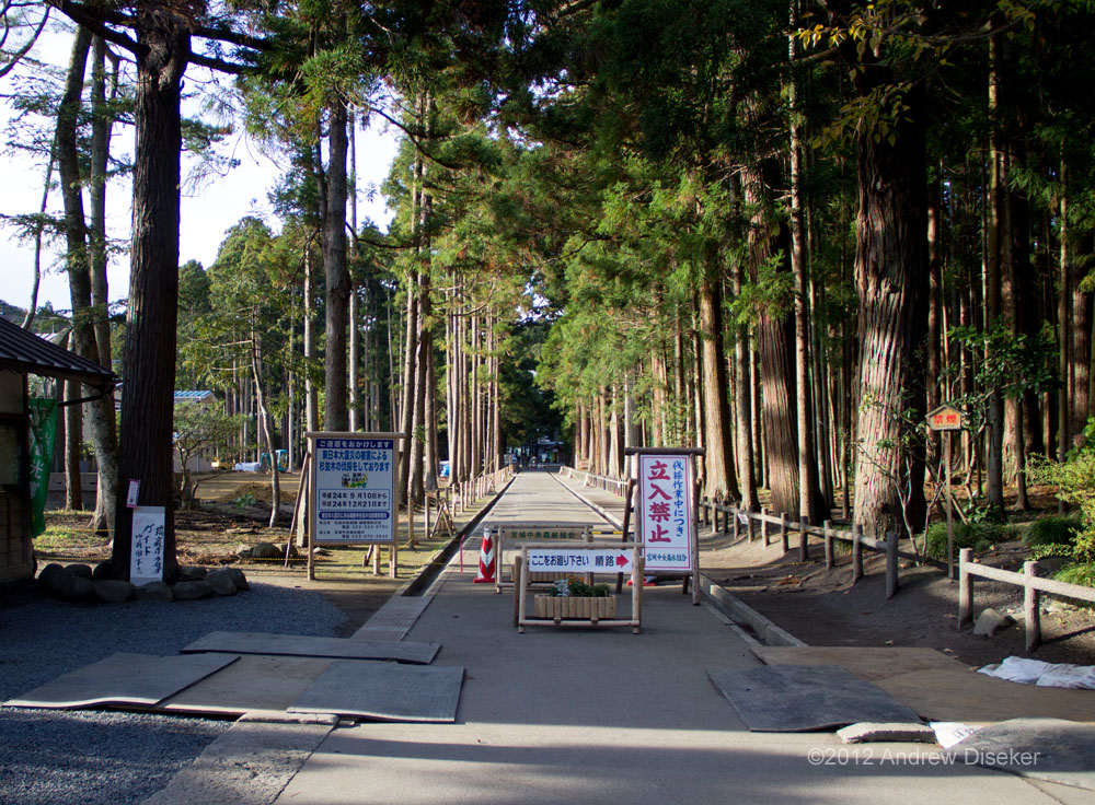 Looking north in 2012, with the central path closed to allow repairs and restoration of the grove