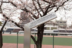 Samidagawa_Asakusa-022